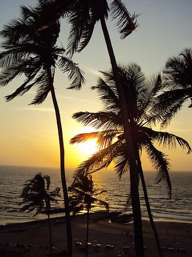 Honeymoon Destinations in India - West